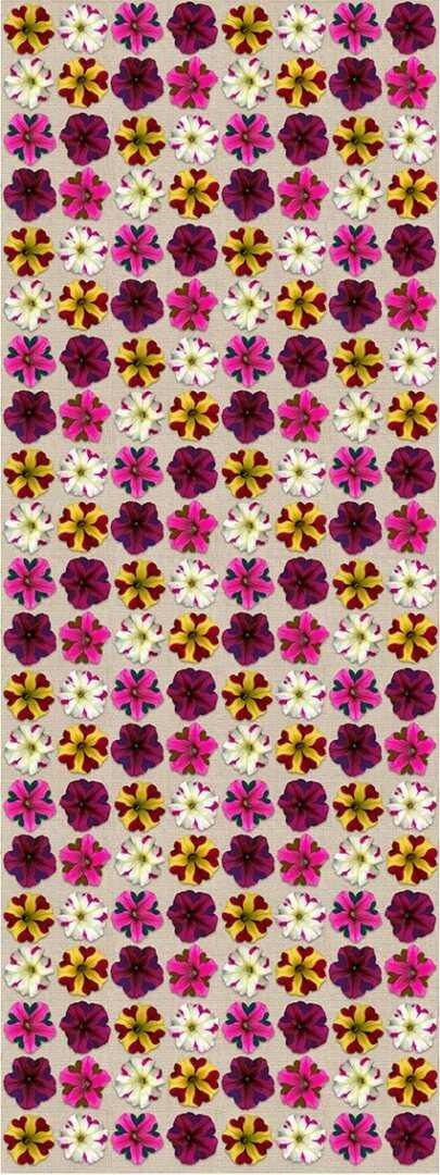 521-flower-1-opt-opt